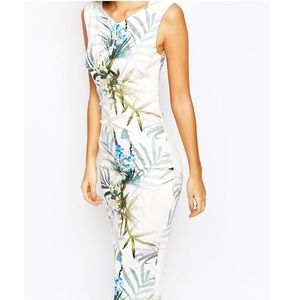 Ted baker London loua twilight floral fitted dress